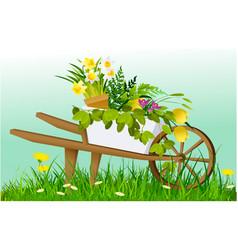 wheelbarrow and garden plants vector image
