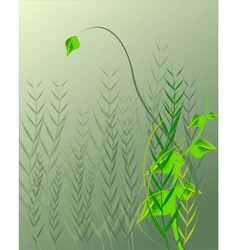 droplets on leaf vector image