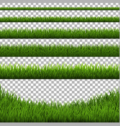 Grass border set isolated vector