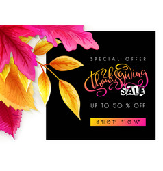 greeting thanksgiving sale promotion banner vector image