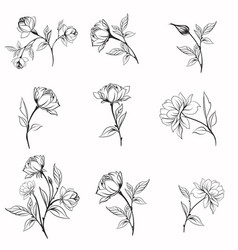set elegant line flowers for logotypes vector image