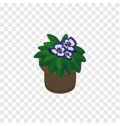 Isolated flower isometric flowerpot vector