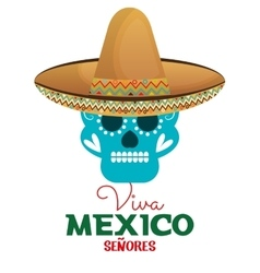 skull hat viva mexico design vector image