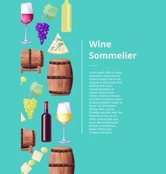 Wine sommelier info poster with wooden barrels vector