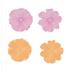 Flower lined pattern vector image vector image