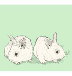 Bunny drawing vector