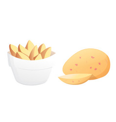 Set potatoes isolated potato vector