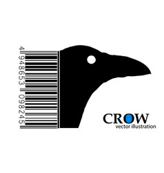 silhouette of a crow vector image