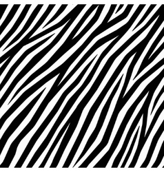 Smooth Zebra Print vector image