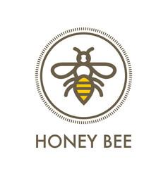 honey bee creative sign concept vector image