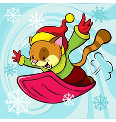 cat cartoon bobsledding vector image