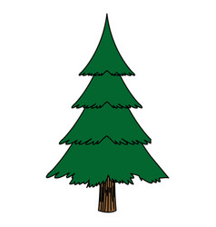 Christmas tree pine decoration ornament design vector
