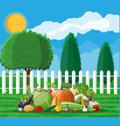 Garden harvest with vegetables vector