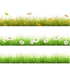 grass in different seasons set vector image