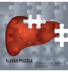 Liver from puzzle pieces vector
