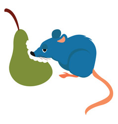 Rat and pear on white background vector