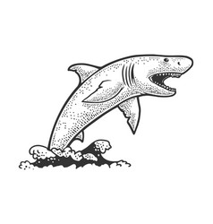 shark jumps out water sketch vector image