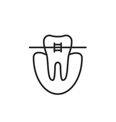 thin line icon of dental braces vector image vector image