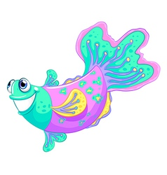 A colorful fish vector image
