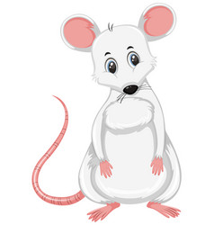 A white rat on white background vector