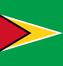 Flag in colors of guyana image vector