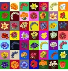 Great set flowers 49 species vector