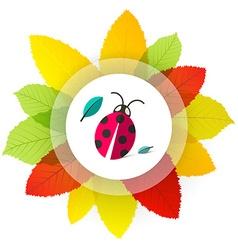 Ladybug - Ladybird on Leaves Cartoon with Colorful vector image