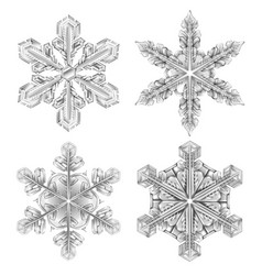 realistic snowflake black and white icon set vector image