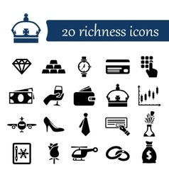 Richness icons vector