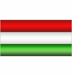 shiny flag of the hungary vector image