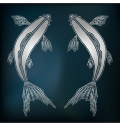 Silver fishes zodiac Pisces sign vector