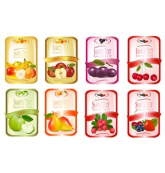 set of labels with fruit vector image