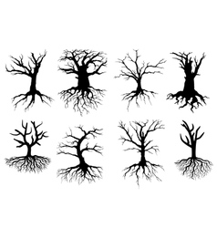 Bare tree silhouettes with roots vector