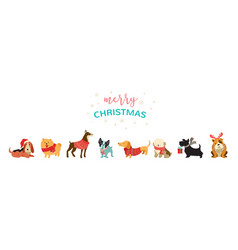 collection christmas dogs merry christmas vector image