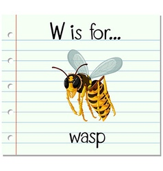 Flashcard letter W is for wasp vector