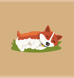 Funny little corgi sleeping on green lawn cartoon vector