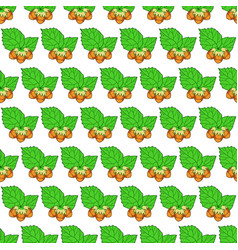 hazel leaf and nuts pattern vector image