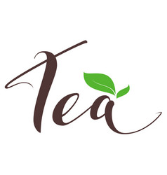 header word tea and green leaf symbol icon vector image