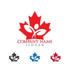 human and maple leaf logo design vector image