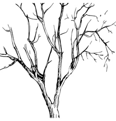 Ink drawing tree vector