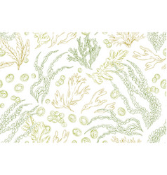 Seamless pattern with contoured seaweeds on white vector
