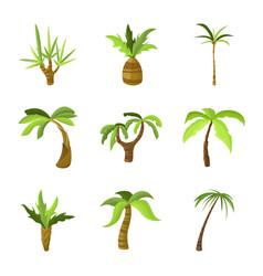 tree and beach symbol vector image