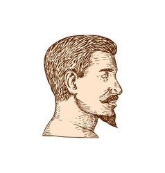 Male goatee side view etching vector