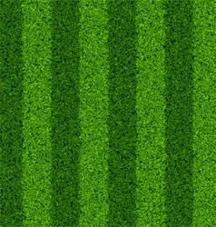 Seamless green grass field vector