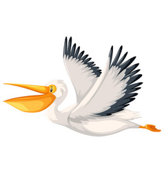 A pelican character flying vector