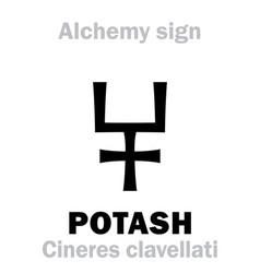 Alchemy potash pot ashes cineres clavellati vector