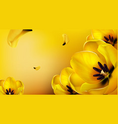 Background with realistic yellow tulips vector