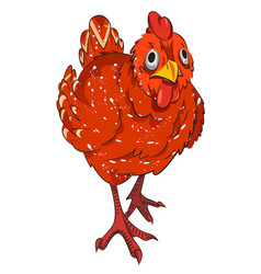 cartoon image of chicken vector image
