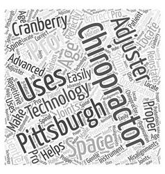 Chiropractor pittsburgh word cloud concept vector