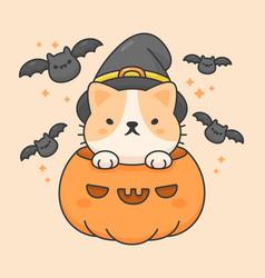 cute cat in a pumpkin wear halloween hat and bats vector image
